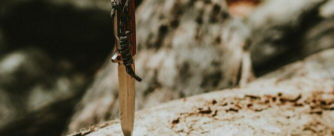 Survival - zdjęcie główne
